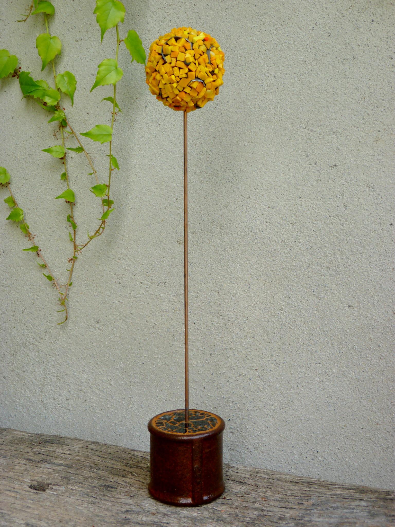 Allium 20