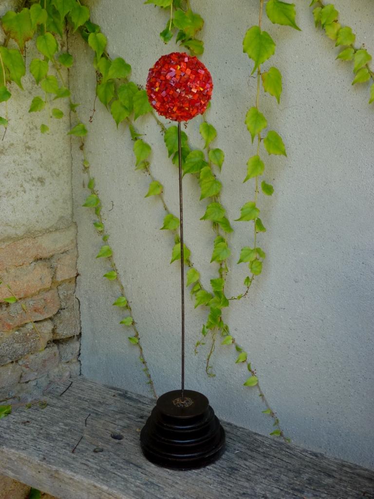 Allium 24