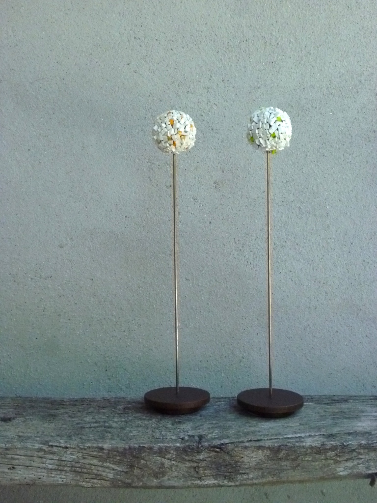 Allium twins